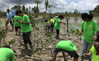UAE students attempt to save world's largest coastal mangrove forest
