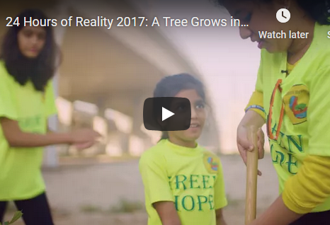 24 Hours of Reality 2017: A Tree Grows in Dubai (Dubai, UAE)